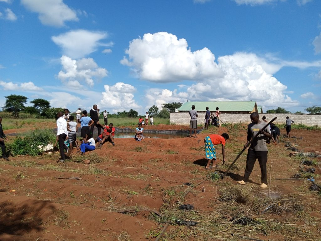 Role Models: Learners from Mwembeshi Secondary school hard at work at one of the fish ponds and in the fields